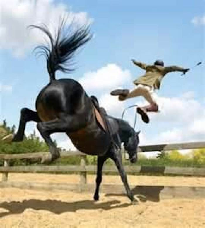 how to stop windsucking in horses